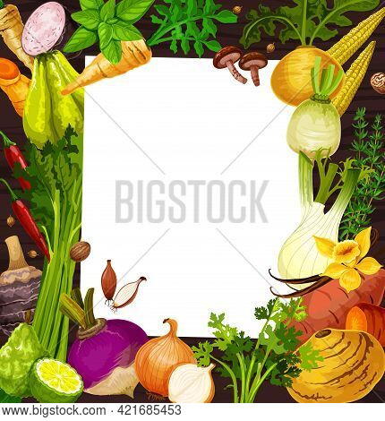 Vegetable Salad Recipe Blank Paper With Vector Frame Of Veggie Food, Herbs And . Sweet Potato, Baby