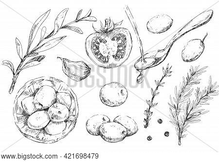 Mediterranean Set Of Vegetables, Herbs And Spices