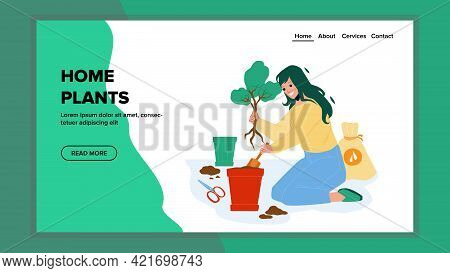 Home Plants Gardening Young Woman In Pot Vector. Home Plants Replanting In House Garden, Agricultura