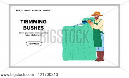 Trimming Bushes Gardener With Trimmer Tool Vector. Man Gardening And Trimming Bushes With Cutting El