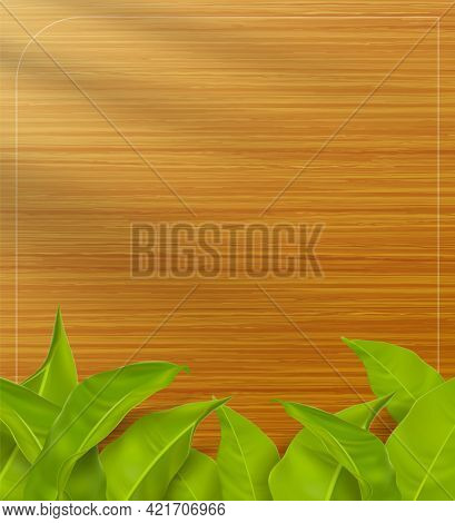 Wood Texture Background Scene With Realistic Light And Shadow Leaves In Front Of The Wood Grain. Use