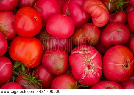 Natural Ripe Red Tomatoes And Cracked. Non-commodity View