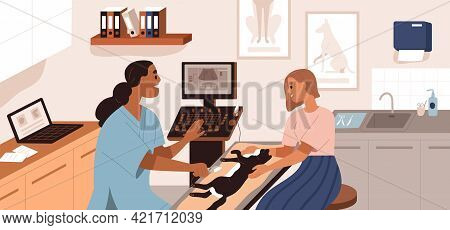 Ultrasound Diagnostics In Vet Clinic. Pet Owner Holding Cat While Veterinarian Examining Patient In