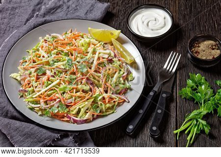Juicy Low Calorie Coleslaw Salad Of Cabbage, Carrots, Spring And Red Onions And Parsley With Light Y