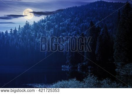 Landscape With Mountain Lake At Night. Peaceful Summer Landscape Coniferous Forest Around The Body O
