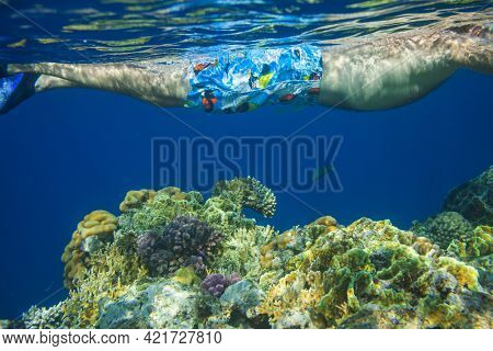 The snorkeling man at coral reef
