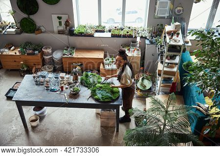 Joyous Beautiful Floral Designer Creating Plant Panels