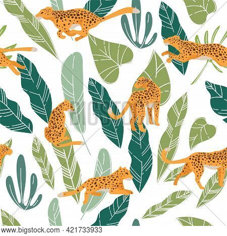 Leopard Or Cheetah Hiding In Lush Monstera Leaves