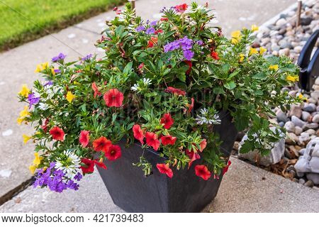 A Planter Full Of Red, Yellow, Purple And White Million Bells And Other Flowers