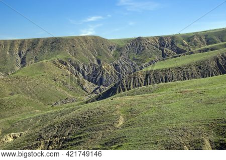 A Semi-desert Covered With Fresh Green Grass In Spring. Clay Ravines With Traces Of Soil Erosion And