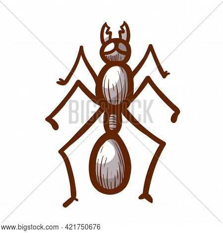 House, Sugar, Stink Or Coconut Ant Hand Drawn Icon. Tapinoma Sessile Pictogram. House Parasite Symbo