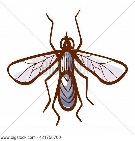 Housefly Hand Drawn Icon. Insect Parasite Pictogram. Winged Common Or Domestic House Fly Symbol.