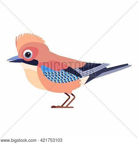 Eurasian Jay Garrulus Glandarius . Birdd Cartoon Flat Style Beautiful Character Of Ornithology, Vect