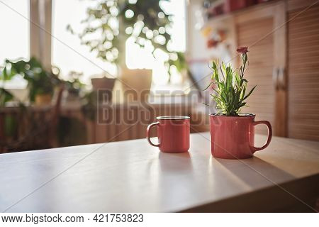 A Cup With Coffee And A Mug With Green Blooming Flower On The Windowsill In The Morning, Home Floral