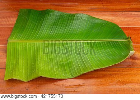 Banana Leaf,fresh Green Banana Leaf Textured Background Which Is Mostly Used In South India For Feas
