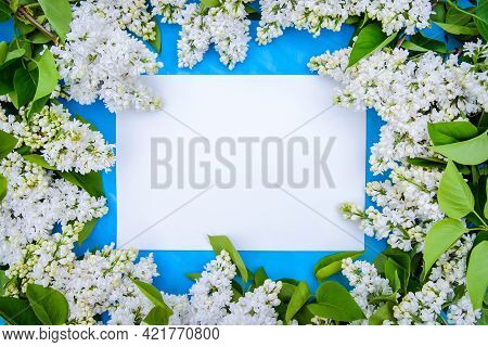 Beautiful Frame Made Of White Terry Lilac With A Piece Of Paper For Text, On A Blue Background. Copy