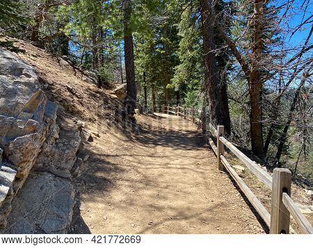 Mountain Hiking Trail With Natural Wood Fence And Boulder Rocks Leading Up Into The Forest