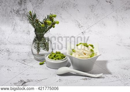 Ice Cream With Spruce Tips. Healthy Eating Concept.
