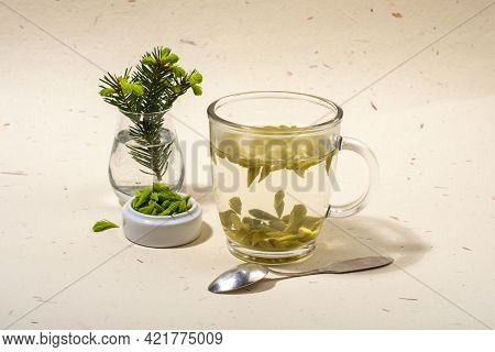 Glass Of Spruce Tips Tea. Healthy Eating And Herbal Medicine Concept.