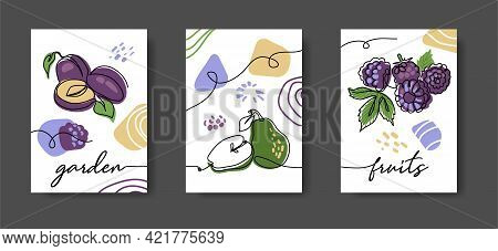 Garden Fruits Wall Line Art Decoration. Pum, Pear, Blackberry. Set Of Vector Illustrations, One Cont