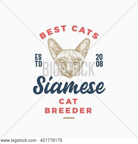 Cat Breeder Badge Or Logo Template. Hand Drawn Siamese Breed Face Sketch With Retro Typography. Vint