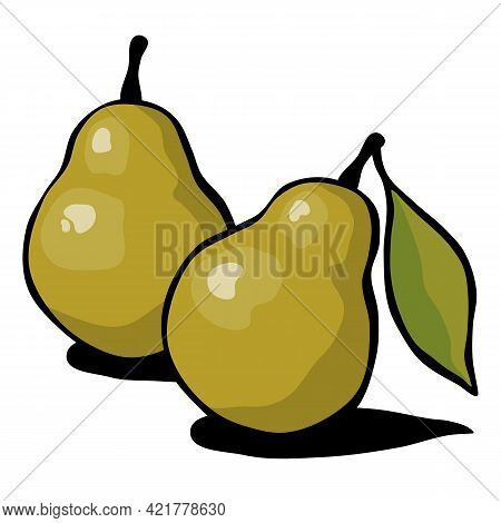 Drawn Ripe Pear Fruits With A Leaf On A White Background. Vector Illustration.