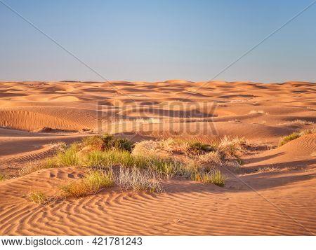 sand dunes field, dusty and windy morning in San Rafael Swell area in Utah (Lower San Rafael Road)