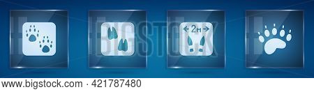 Set Paw Print, Camel Paw Footprint, Safe Distance And Bear. Square Glass Panels. Vector