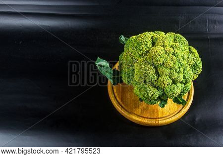 Fantasy Mini Landscape - Tree Made With Broccoli On A Black Background, Simulating A Miniature Fores