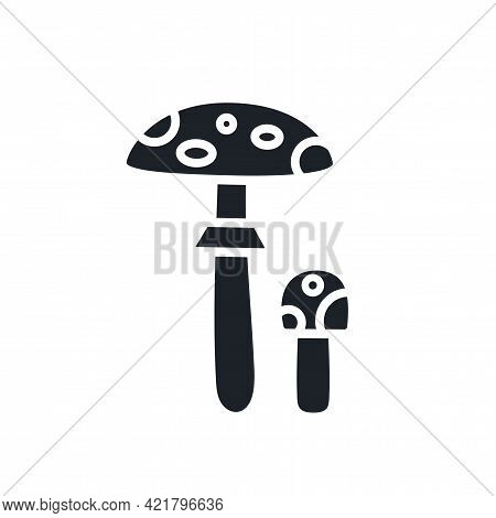 Fly Agaric Toadstool Silhouette. Black Isolated Silhouettes. Fill Solid Icon. Modern Glyph Design. V