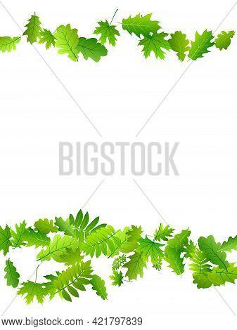 Bush Leaves Beautiful Vector Pattern. Herbarium Bush Foliage Macro. Oak And Maple Leaves Pattern. He