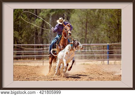 Framed Photo Of A Cowboy In A Calf Roping Competition At A Country Rodeo