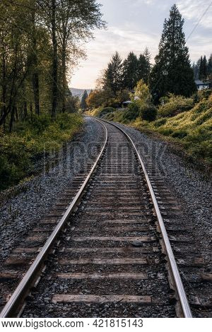 Railroad Tracks Surrounded By Green Trees In A Modern Suburban City. Taken In Port Moody, Vancouver,