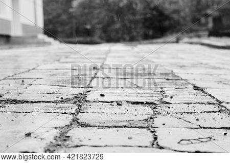 Monochrome Photo Old Sidewalk In The Rain. Wet Sidewalk Tiles With Deep Cracks And Small Stones. Day