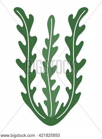 Seaweed Spirulina Logo Icon On White Background