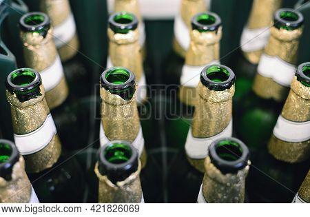 Empty Beer Bottles Recycling