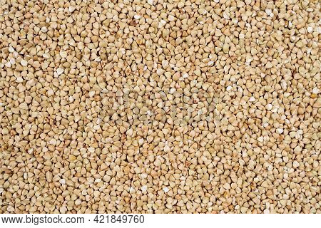 Green Buckwheat Closeup. Healthy Eating, Cereals And Cooking. Dry Green Buckwheat Grain. Healthy Cer