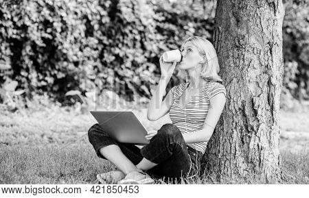 Girl Work With Laptop In Park. Lunch Time Relax Or Coffee Break. Work In Summer Park. Reasons Why Yo