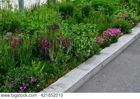Flowerbed Of Colorful Colors Of Prairie Flowers In An Urban Setting Attractive For Insects And Butte