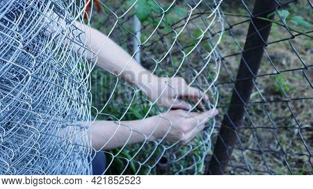 Blurred Background Of An Expanded Metal Mesh And Men's Hands Fastening Parts Of The Installed Fence,