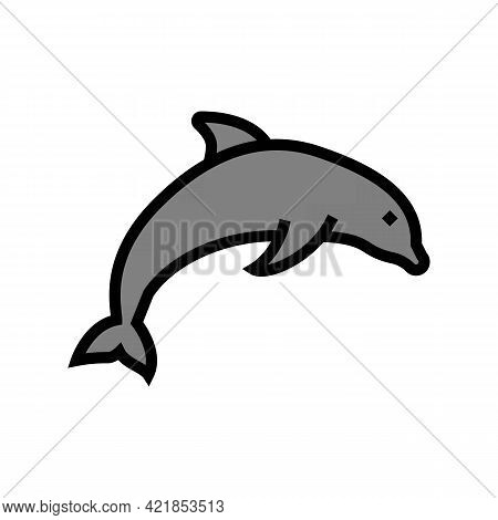 Dolphin Ocean Color Icon Vector. Dolphin Ocean Sign. Isolated Symbol Illustration