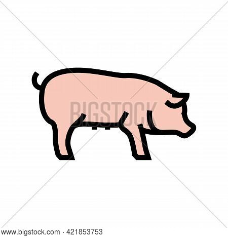 Pig Domestic Animal Color Icon Vector. Pig Domestic Animal Sign. Isolated Symbol Illustration