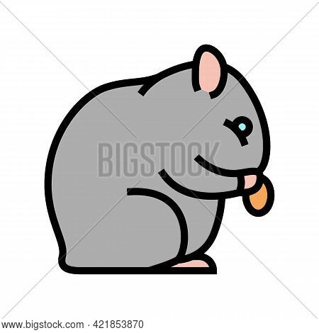 Hamster Pet Color Icon Vector. Hamster Pet Sign. Isolated Symbol Illustration