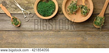 Green Sprouts Of Chia, Arugula And Mustard In A Wooden Spoon On A Background From Old Gray Boards, T