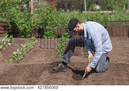 Gardener Digs Holes In The Soil With A Small Garden Trowel