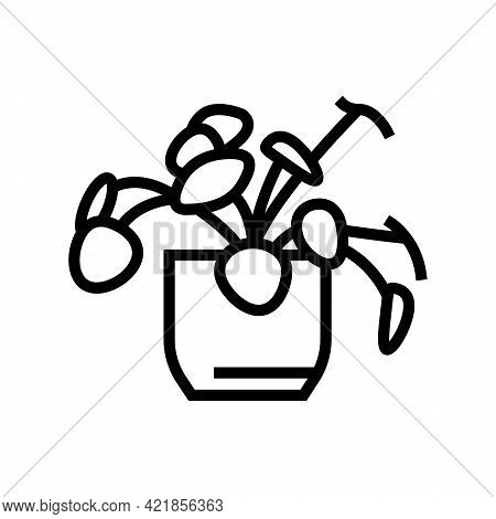 Natural Plant Houseplant Line Icon Vector. Natural Plant Houseplant Sign. Isolated Contour Symbol Bl