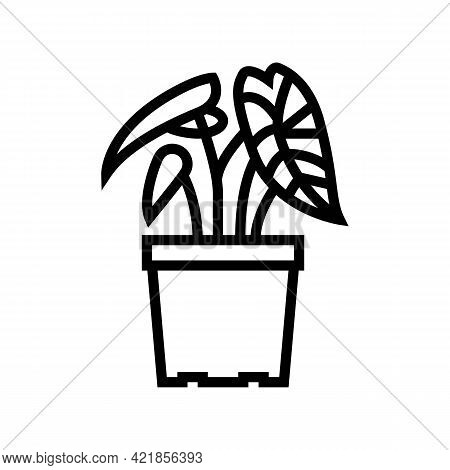 Tropical Houseplant Line Icon Vector. Tropical Houseplant Sign. Isolated Contour Symbol Black Illust