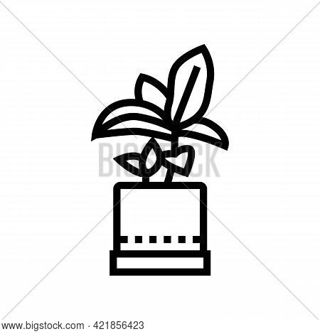 Green Leaves Houseplant In Pot Line Icon Vector. Green Leaves Houseplant In Pot Sign. Isolated Conto