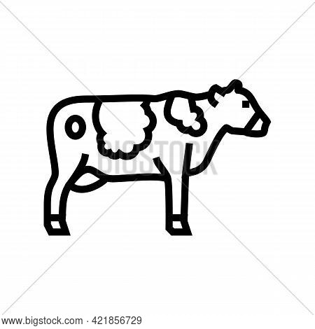 Cow Domestic Animal Line Icon Vector. Cow Domestic Animal Sign. Isolated Contour Symbol Black Illust