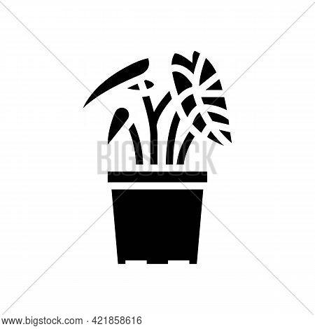 Tropical Houseplant Glyph Icon Vector. Tropical Houseplant Sign. Isolated Contour Symbol Black Illus